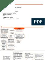 mapa mental act 3 materia 6.pptx