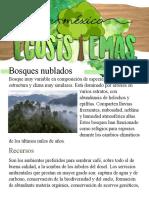 Plantilla 6.docx