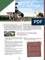 animaux d'élevage troupeau.pdf