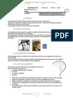 TECHNIQUE_Du_BRUSHING_version_site