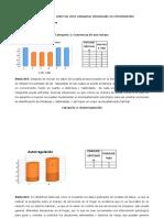 Informe-Johanna Bilbao
