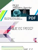 PESS MIEMBRO SUPERIOR