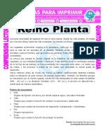 Ficha-Reino-Planta-para-Quinto-de-Primaria