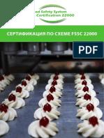 flyer-fssc22000_russia