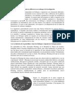 penicilina español