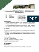 Plan de Trabajo Para Las Elecciones de La Directiva Del Municipio Escolar 2021 en La Institución Educativa Nº 2024 en El Marco de La Emergencia Sanitaria Por El Coronavirus Covid-19