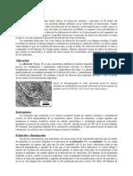 Lab4b. Descripcion Sistematica de min en SD.doc