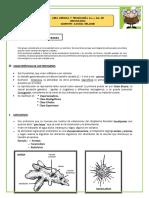 seman 30 1ro y 2do.pdf