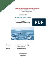Informe 1 Aplicada - Aguas.docx