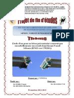 Tighilt, Samir ; Bechouche, Karim.pdf
