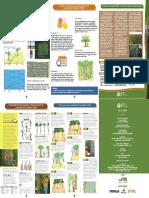 1.Encarte_IFT_Inventário-Florestal-100-em-EIR