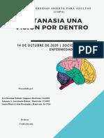 trabajo final uapa123 eutanasia