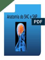 Formacao_APAE_-_Desenvolvimento_Neuropsicomotor_na_crianca