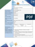 Anexo 1 Formato plan de trabajo practica profesional
