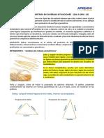 CALCULAMOS PERÍMETROS EN DIVERSAS SITUACIONES-14 (2)