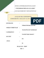 ANÁLISIS DE EXPEDIENTE CONSTITUCIONAL