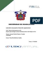 U3-Actividad 1 Tipos de intervenciones en DO.docx