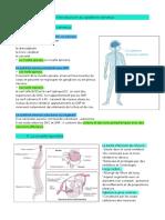 Introduction au système nerveux.pdf