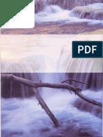 10, Tui Na, El Masaje Terapéutico Chino.pdf