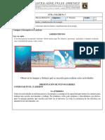 GUÍA  N° 3 C. NATURALES.pdf