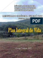plan_de_vida Pijaos