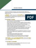 RUTA LÉXICA.pdf