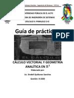 P1-CALCULO II - 2-2020.pdf