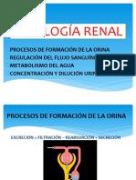 FISIOLOGÍA RENAL up3