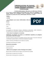 Clasificación de las enfermedades fitopatologia en plantas