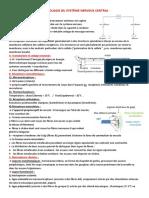 PHYSIOLOGIE DU SYSTÈME NERVEUX  (1)