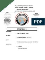 PRACTICA N°11