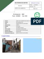 REPORTE_INSP_ENEL_29491 (1)