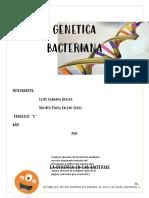 cuento de genetica bacteriana