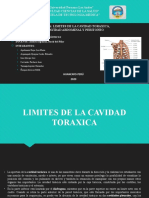 LIMITES DE LA CAVIDAD TORAXICA Y DIVISION DE LA CAVIDAD ABDOMINAL.pptx