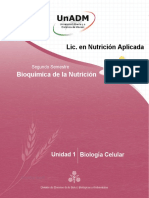 NBNU_U1_LUGF.docx