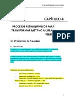 CAPÍTULO 4,5,6