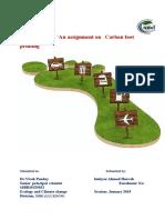 carbon footprinting.docx