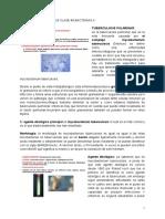VIERNES 14 AGOSTO 2020 CLASE #3 BACTERIAS II.pdf