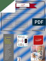 triptico -V-Rs -2020.pdf