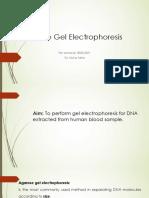 5. Agarose gel electrophoresis