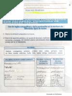 Uso de Las Reglas Ortográficas. Nicolás Ortega