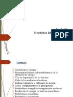 UNIDAD 07 - BIOQUIMICA DEL CRECIMIENTO Y METABOLISMO-2020