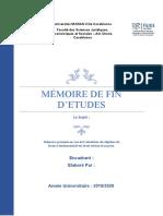 mémoire DE FIN D