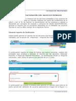 MODELO FACTURA CON VALES EFECTIVOS-ELECTRONICOS