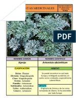Ficha Técnica Plantas Medicinales.docx