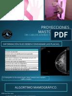 PROYECCIONES MASTO.pptx