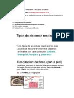 CLASE 3 DE NATURALES_LA RESPIRACION