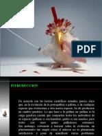 Presentacion Morfofisiologia Aves