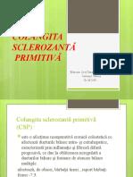 COLANGITA SCLEROZANTĂ  PRIMITIVĂ (1)
