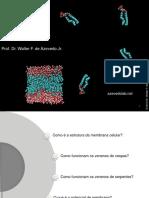Biof-sica---Membrana-celular.pdf